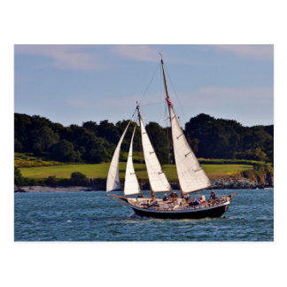 Sailing In Newport, Rhode Island, USA Postcard