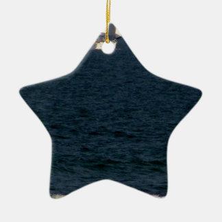 sailing with friends.JPG Ceramic Ornament