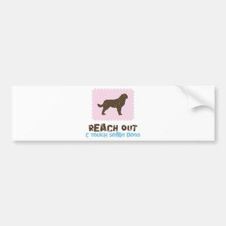 Saint Bernard Bumper Sticker