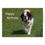 Saint Bernard dog photo happy birthday card