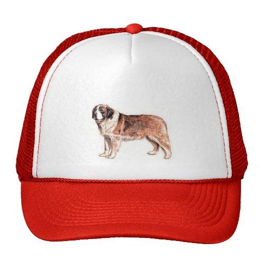 Saint Bernard Hats
