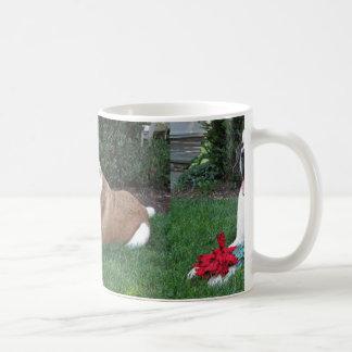 saint bernard laying coffee mug
