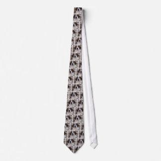 Saint Bernard Men's Tie