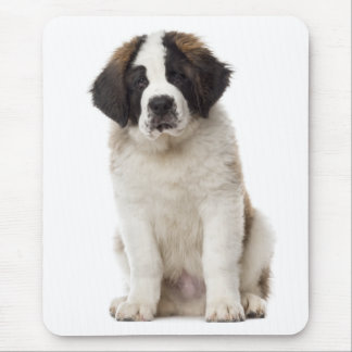 Saint Bernard Puppy Dog Love St. Bernard Mouse Pad