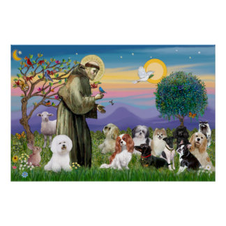 Saint Francis Blessing Ten Dogs Poster