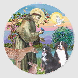 Saint Francis - Two Bernese Mountain Dogs Classic Round Sticker