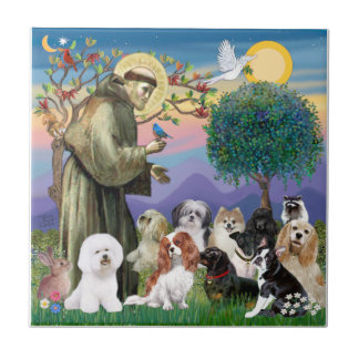 Saint Francis with 10 Dogs Tile