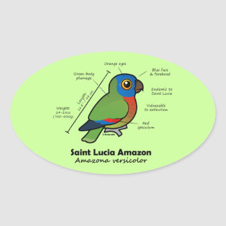 Saint Lucia Amazon Statistics Oval Sticker