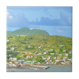 Saint Lucia Small Square Tile