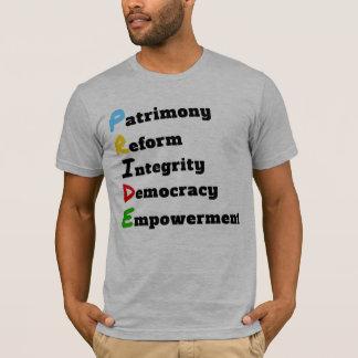 Saint Lucian Pride Explained T-Shirt