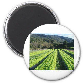 Saint Tereza/RS 3 6 Cm Round Magnet