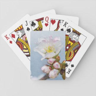 Sakura Blossom Poker Deck