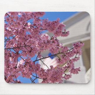 Sakura Cherry Blossoms Americana Mouse Pad