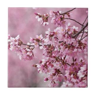 Sakura Cherry Blossoms Pastel Pink Layers Tile