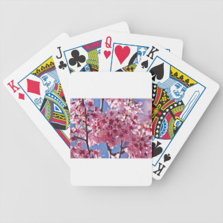 Sakura Cherry Blossoms Red Stars Poker Deck