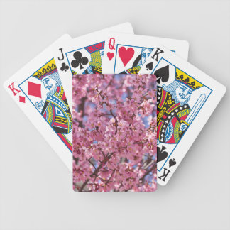Sakura Pink Cherry Blossom Sky Poker Deck