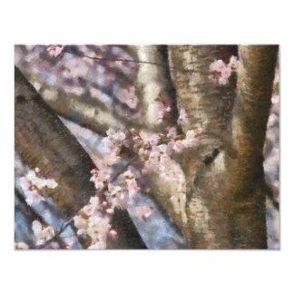 Sakura - Spring Blossom Custom Announcement