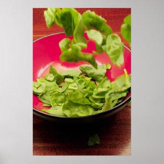 Salad Toss Poster