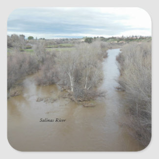 Salinas River North of Veterans Memorial Bridge Square Sticker