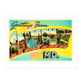 Salisbury Maryland MD Old Vintage Travel Postcard- Postcard