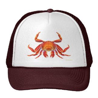 Sally Lightfoot Crab Hat