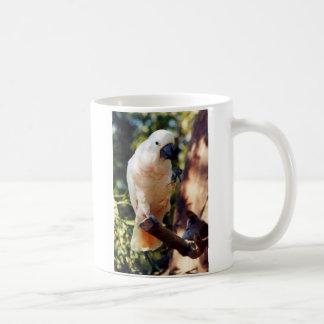 salmon cockatoo coffee mug