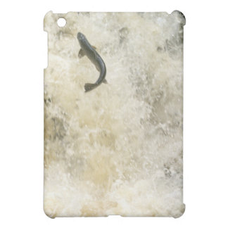 Salmon iPad Case