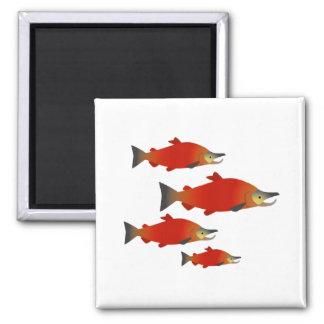 Salmon Rally Magnet