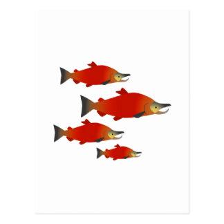 Salmon Rally Postcard