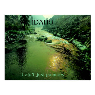 Salmon River in Idaho Postcard