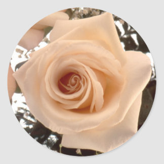 Salmon Rose Round Sticker