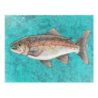 Salmon Sketch Postcard