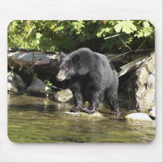 """Salmon Spotting"" Mouse Pad"