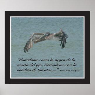 Salmos 17:8 con Pelicano (Cartel) Posters