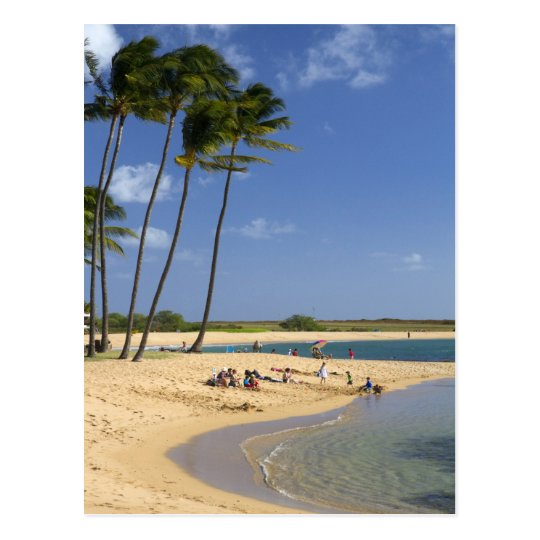 Salt Pond Park located on the island of Kauai Postcard