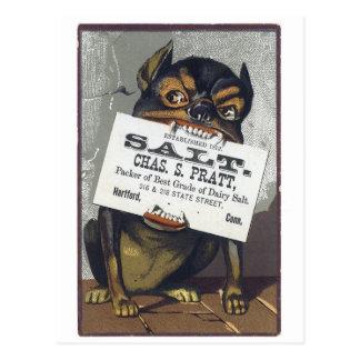 Salt Postcard