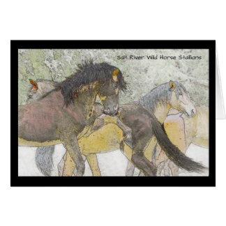 Salt River Wild Horse Stallions Greeting Card