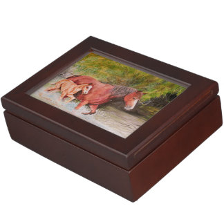 salt river wild horses keepsake box