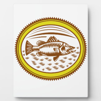 salt-water-barramundi-side-OVAL Plaque