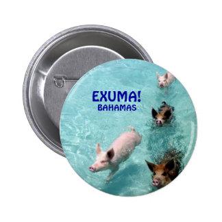 Salt Water Swimming Pigs button