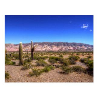 Salta Argentina Cactus Plants And Barren Hill Postcard