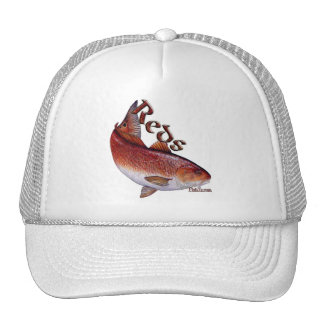 Saltwater Collection of Fish Cap