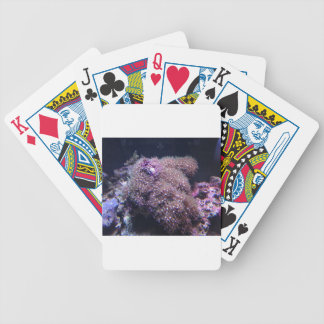 Saltwater Live Rocks Bicycle Playing Cards
