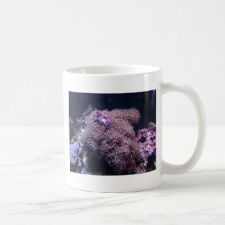 Saltwater Live Rocks Coffee Mug