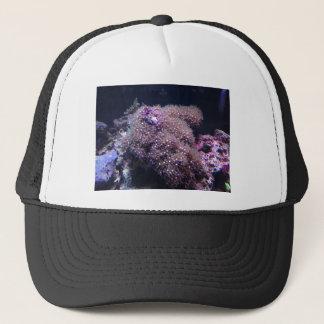 Saltwater Live Rocks Trucker Hat