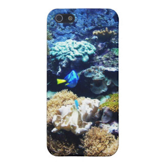 Saltwater tank 1 Iphone 4 case