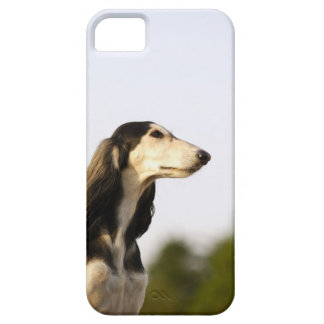Saluki 2 barely there iPhone 5 case