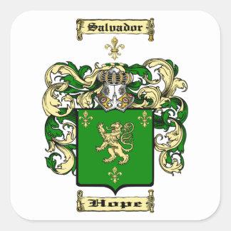 Salvador Square Sticker