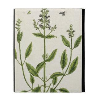Salviam from 'A Curious Herbal', 1782 (colour engr iPad Folio Case
