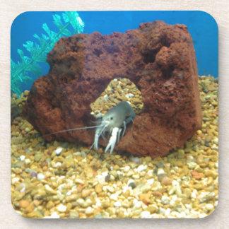 Sam the blue lobster crayfish coaster